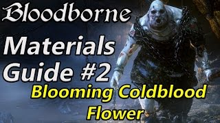 Bloodborne Chalice Material farming #2 - Blooming coldblood flower (farming method + chest location)