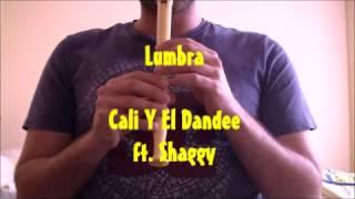 Lumbra - Cali Y El Dandee ft. Shaggy con Flauta Dulce (Notas)