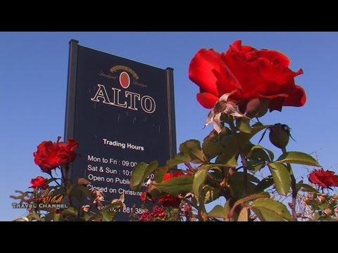 Alto Wine Estate Stellenbosch South Africa – Africa Travel Channel