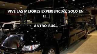 ANTRO BUS THE SECRET