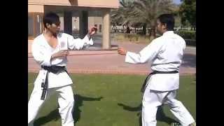 kumite techniques [shotokan]