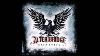 Alter Bridge - The Damage Done (Blackbird)