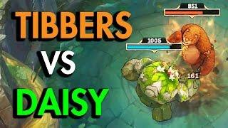 DAISY VS TIBBERS!