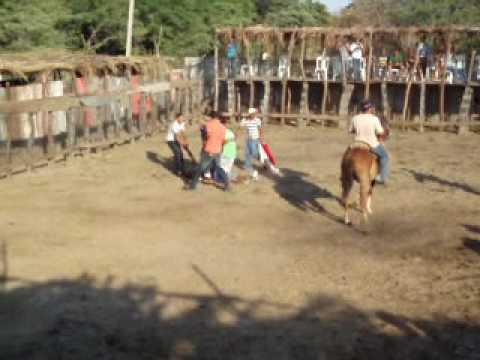 Nicaragua carnage