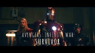 Avengers: Infinity War | Survivor - 2WEI