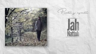 Jah Nattoh - Mas que mil palabras (DonWaton)