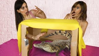 Whats in the Box Challenge with LIVE ANIMALS !!
