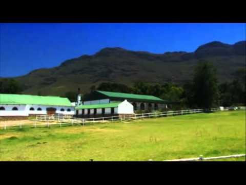 Riebeek West – Western Cape – South Africa