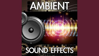 City Ambience (Downtown Cars Police Siren Ambience Background Noise Soundscape Clip) (Sound Effect)