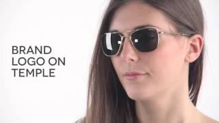 34294f3384 Randolph Engineering Aviator Polarized AF171 Sunglasses Silver ...