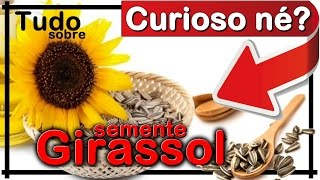 Semente de Girassol: Benefícios e Para que Serve