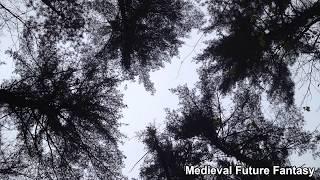 Medieval Future Fantasy   Dark Ambient Music for Piano, Cello, & Sound Design Percussion