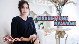 Bisane Mung Nyawang - Suliyana