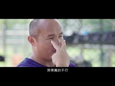 大未來計畫 張泰山 HD1060930 - YouTube