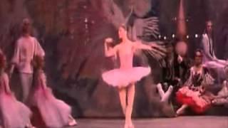 Dance of the Sugar Plum Fairy Tchaikovsky - The Nutcracker