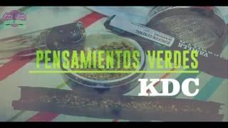 KDC - PENSAMIENTOS VERDES (  LETRA ) + LINK DE DESCARGA