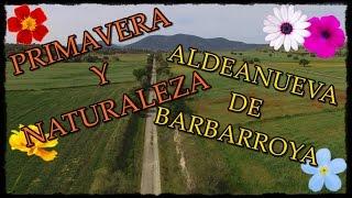 BIENVENIDA PRIMAVERA!! (desde Aldeanueva De Barbarroya y sus alrededores!!)