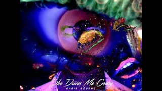 Chris Bourne - She Drives Me Crazy (Fine Young Cannibals, Original Cover)