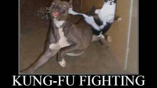 Carl douglas - Kung Fu Fighting REMIX (fat boy slim)