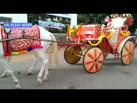 Horse Chariot Bride Groom Entry Wedding Chennai | Bangalore | Hyderabad +91 81225 40589