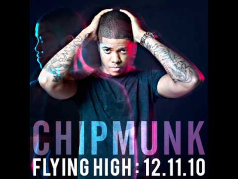 chipmunk-flying-high-laydeec1
