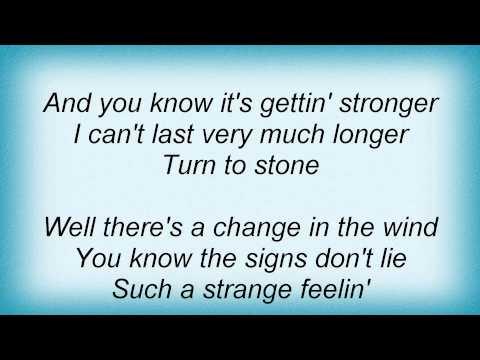 joe-walsh-turn-to-stone-lyrics-megan-gaulding