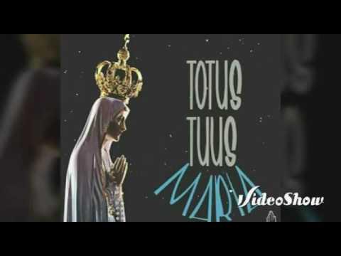 Toda Tua de Comunidade Catolica Colo De Deus Letra y Video