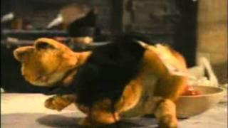 garfield dance-dulce tirah tira (music video)