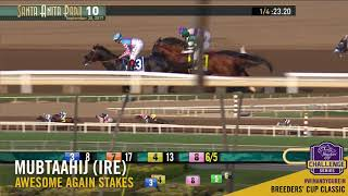 2017 Awesome Again Stakes - Mubtaahij (IRE)