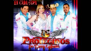 PROTEGIDOS DE TIERRA CALIENTE... OJOS NEGROS (produccion2013)