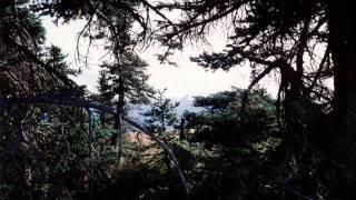 """Joy"" (from Eastern Prayers, Western Prayers) -- David Paul Mesler -- pop piano solo"