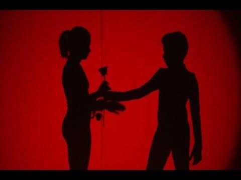 Shadows, o piesă de teatru de umbre, pe scena de la Next Star!