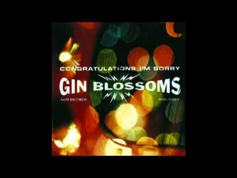 Perfectly Still de Gin Blossoms Letra y Video