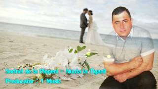 SORINEL DE LA PLOPENI -   NUNTA DE TIGANII 2015 Muzica de Petrecere 2015
