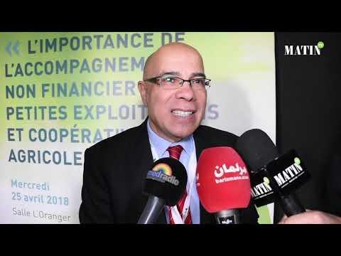Une future unité de stockage de l'oignon verra le jour à Meknès