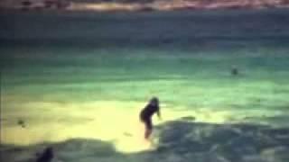 Beach Boys - Good Vibrations Music Video
