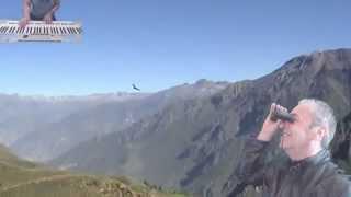 El Condor Pasa - Gheorghe Zamfir Played by AlexTyros4
