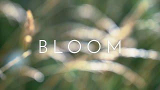 Bloom | Live Audio