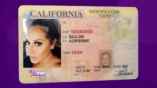REAL Passport Photos