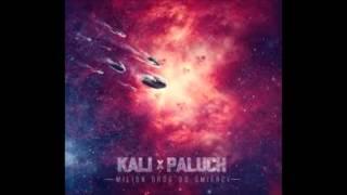 10. Kali & Paluch - Nie zmusisz mnie ft. Onek87