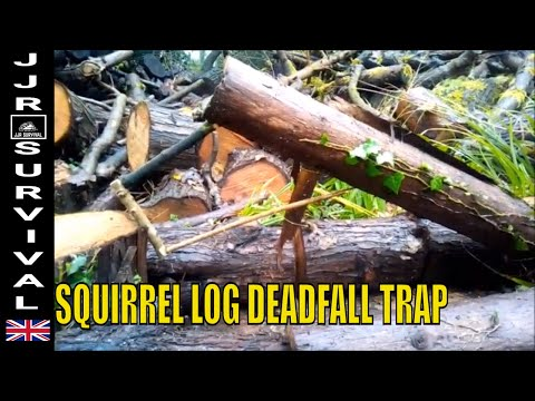 SQUIRREL LOG TRAP