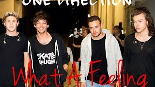 One Direction   What A Feeling (Karaoke)