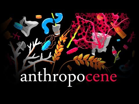 The Great Party - The Anthropocene