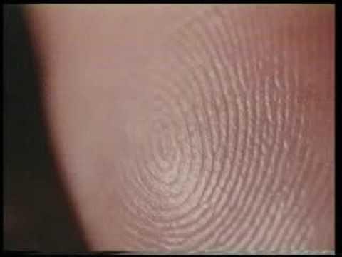 """MIRACLES OF THE QURAN """"fingerprints"""" part 13"""