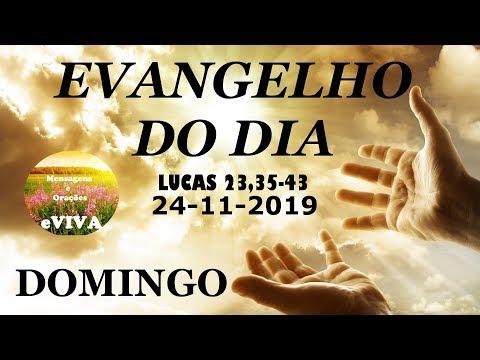 EVANGELHO DO DIA 24/11/2019 Narrado e Comentado - LITURGIA DIÁRIA - HOMILIA DIARIA HOJE
