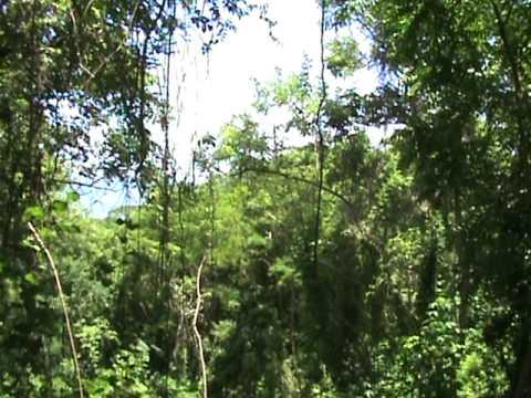 Nicaragua Real Estate — Balcones de Majagual Mariposa19