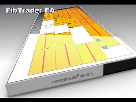 FibTrader Expert Advisor Webinar HD