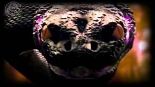 Sabaton - Twilight of the Thunder god - (Sub Español)