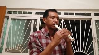 Minha Flauta de Bambu (Astronauta) Flauta doce Zebedeu.
