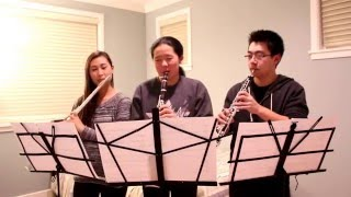 """Aladdin ~ """"A Whole New World"""" (Flute, Clarinet, and Oboe Cover) ft. Thomas"""